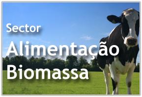 Sector Alimentação Animal